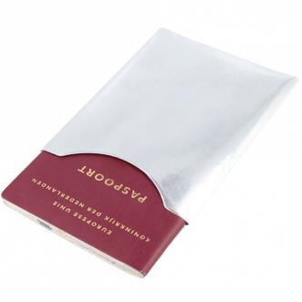 Pasaport kalkanı